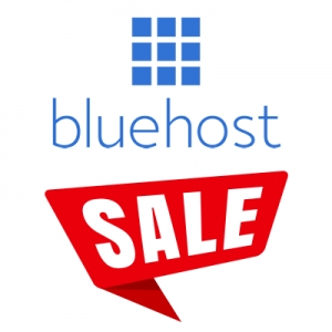 Bluehost Christmas In July - 2016